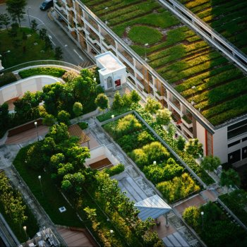 Urban Nature Based Solutions